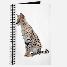KiaraServal Home & Office Journal