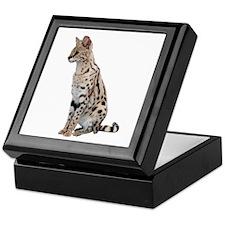 KiaraServal Home & Office Keepsake Box