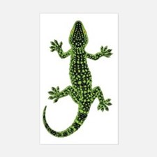 Gecko Decal