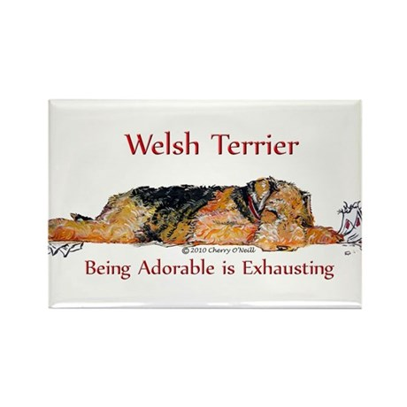 Exhausted Welsh Terrier Rectangle Magnet (100 pack