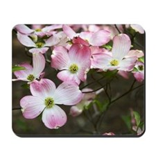 Pink Dogwood Mousepad