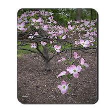 Dogwood Tree Mousepad