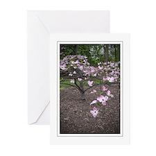 Dogwood Tree Greeting Cards (Pk of 10)