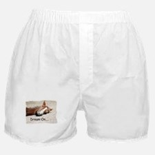 Dream On Sleeping Horse Boxer Shorts