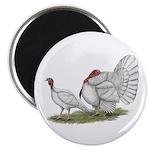 """Turkeys: White Holland 2.25"""" Magnet (100 pack"""