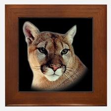 Cindy Black Cougar Stuff Framed Tile