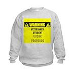 WARNING: Vet Student Under Pressure Kids Sweatshir