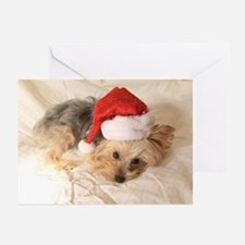 Santa Yorkie - Greeting Cards (Pk of 20)