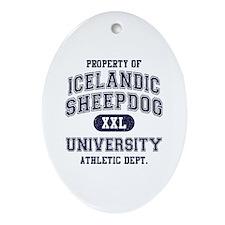 Icelandic Sheepdog U Ornament (Oval)