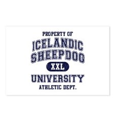 Icelandic Sheepdog U Postcards (Package of 8)