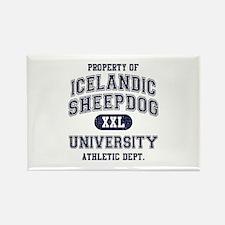 Icelandic Sheepdog U Rectangle Magnet