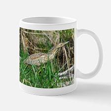 American bitterns Mug