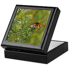 Viceroy Butterfly Keepsake Box