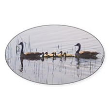 Goose Family Decal