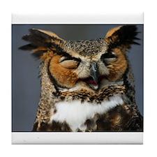 Cute Owl animals Tile Coaster