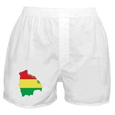3D Map Of Bolivia Boxer Shorts