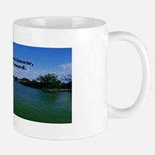 Wants and needs Mug