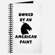 Owned by a Paint Journal