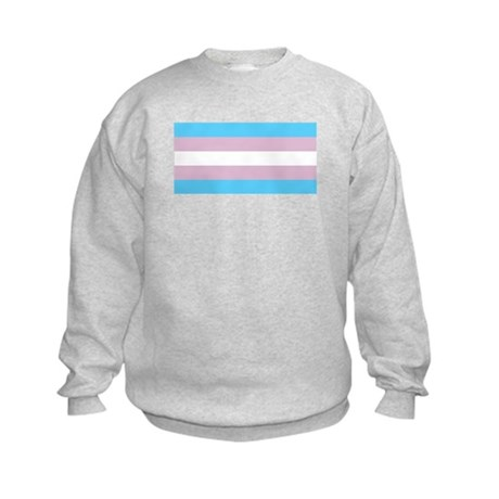 Trans Flag Kids Sweatshirt