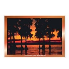Wetlands Postcards (Package of 8)