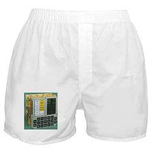 Unique Lunar Boxer Shorts