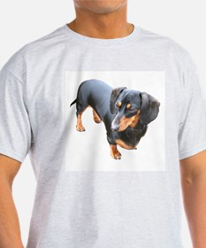 'Lily Dachshund Dog' Ash Grey T-Shirt