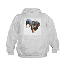 'Lily Dachshund Dog' Hoodie