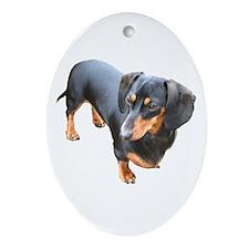 'Lily Dachshund Dog' Oval Ornament