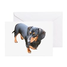 'Lily Dachshund Dog' Greeting Cards (Pk of 10)
