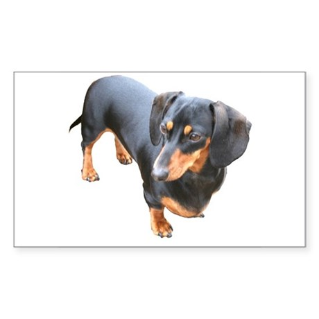 'Lily Dachshund Dog' Rectangle Sticker