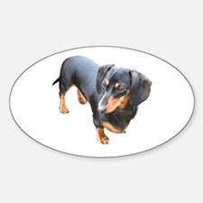 'Lily Dachshund Dog' Oval Decal