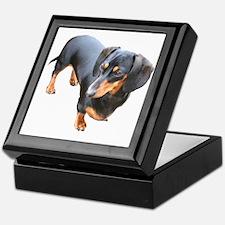 'Lily Dachshund Dog' Keepsake Box