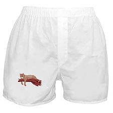 Funny Funny cougar Boxer Shorts