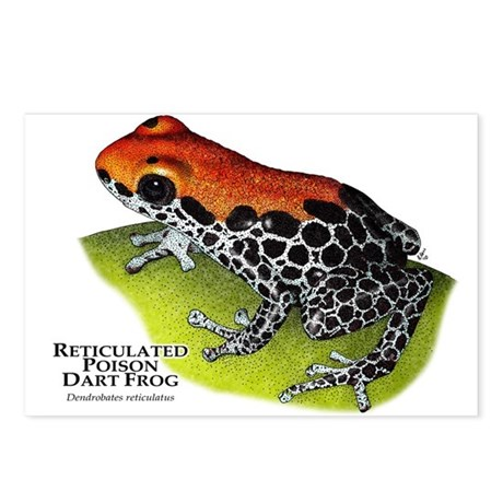 Red-Backed Poison Dart Frog Postcards (Package of