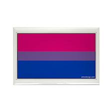 Bi-Sexual Pride Flag Rectangle Magnet (10 pack)