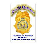 Hawaii Office of Narcotics En Mini Poster Print