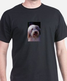 Bearded Collie Photo Black T-Shirt