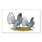 Sebright Silver Bantams Sticker (Rectangle 10 pk)
