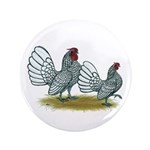 "Sebright Silver Bantams 3.5"" Button (100 pack"