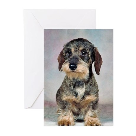 Wirehaired Dachshund Greeting Cards (Pk of 10)