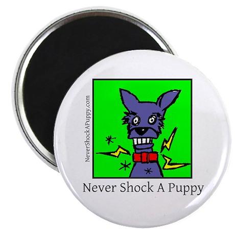 Never Shock Magnet (10 pack)
