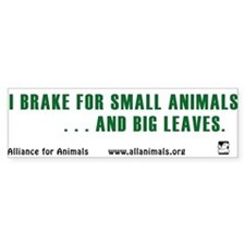 I brake Bumper Bumper Sticker