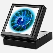 Cute Spiral Keepsake Box