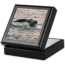Whale Tail Keepsake Box
