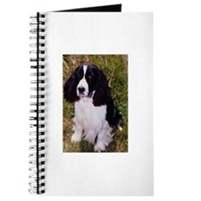 Springer Spaniel Pup Journal