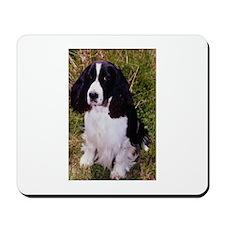 Springer Spaniel Pup Mousepad