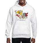 O'Boland Sept Hooded Sweatshirt
