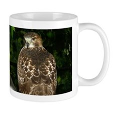 2 pics Red-tailed Hawk Mug
