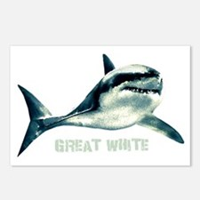 Great White Postcards (Package of 8)