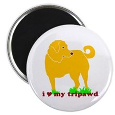 Golden Tripawd Love Magnet